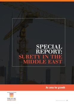 Special Report - Surety in the Middle East