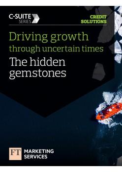 Driving growth through uncertain times: The hidden gemstones