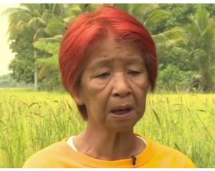 Livelihood at risk: Farmers question Philippines rice tax - Al Jazeera