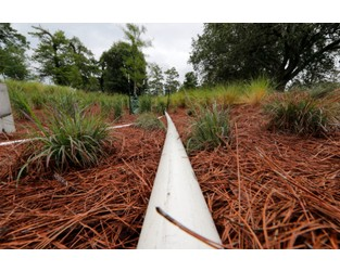 Ecoroofs, Bioswales, Water Gardens: Cities Get Creative To Tame Stormwater Floods