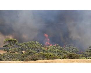ICA pegs Australian bushfires insured losses at $1.13bn