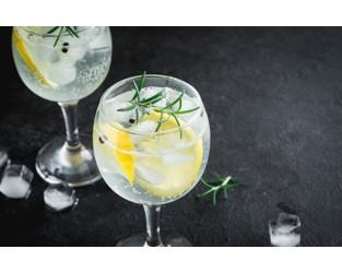Distillery toasts gin trademark victory at US TTAB - WIPR