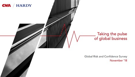 Global Risk and Confidence Survey: November '18