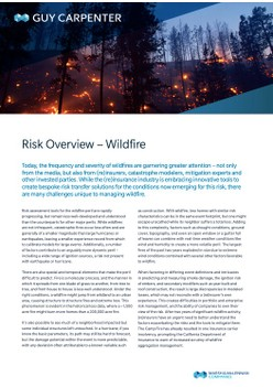 Risk Overview – Wildfire