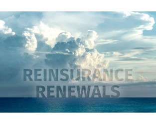#REinsuranceMonth sets tone for the path to 1.1