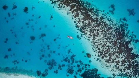 Oil spill in Mauritius calls for more efforts to safeguard coral reef ecosystems - Modern Diplomacy