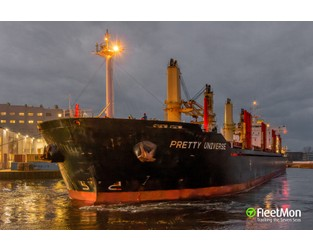 Bulk carrier contacted ro-ro on Weser - FleetMon