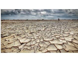 Australia: Insurers float plan to help drought hit farmers