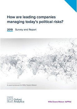 2019 Political Risk Survey Report