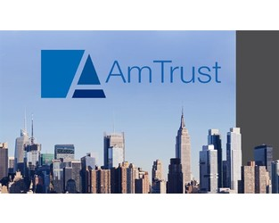 AmTrust lawyer argues suit over NYSE delisting is 'meritless'