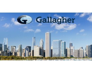 Emerging markets fac heavyweight Samengo-Turner to join Gallagher