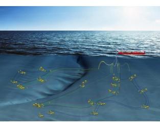 Halliburton wins drilling and completion job on Woodside's Senegal project - OET