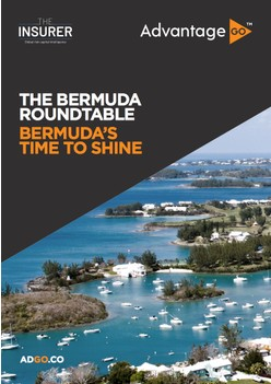 Roundtable: Bermuda's Time To Shine