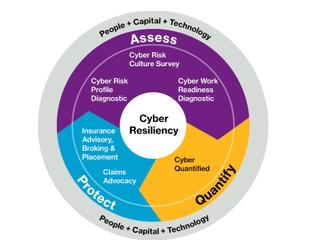 Cyber risk check up: Willis Towers Watson's top 9 steps for greater cyber resilience