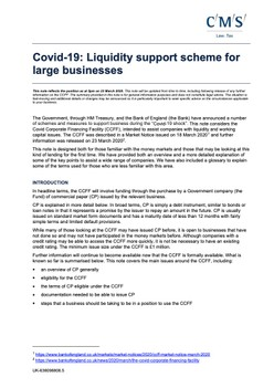 Covid-19: Liquidity support scheme for large businesses