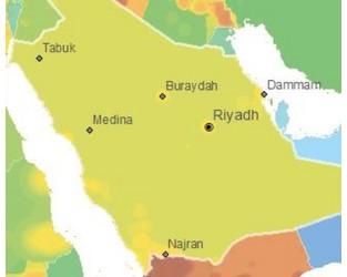 Saudi Arabia - Business Environment & Risk Analysis