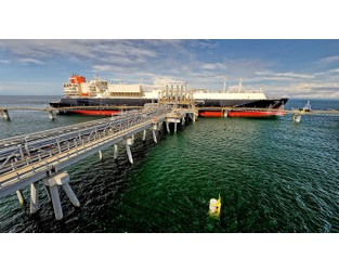 Coronavirus supply chain crunch feared as Chinese LNG importer invokes force majeure