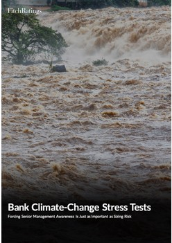 Bank Climate-Change Stress Tests