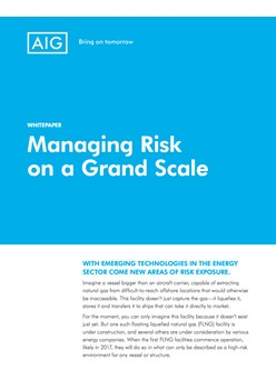 Managing Risk on a Grand Scale