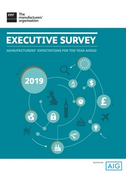 The EEF/AIG Annual Senior Executive Survey