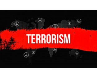 Hearing examines evolution of post 9/11 threats - Homeland Preparedness News