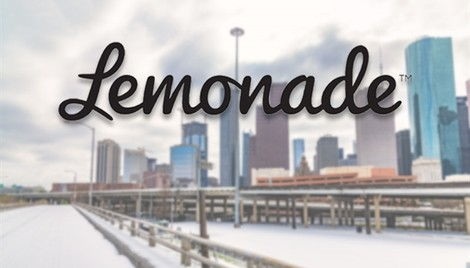 Lemonade saw year's worth of claims from Texas Freeze