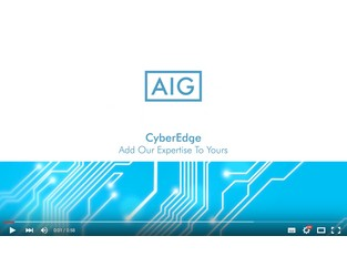 Video: CyberEdge by AIG: Tools for Tomorrow