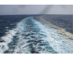 Vanishing food waste flouts maritime and national law - Splash