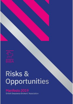 Risks & Opportunities - Manifesto 2019
