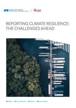 Reporting Climate Resilience: The Challenges Ahead