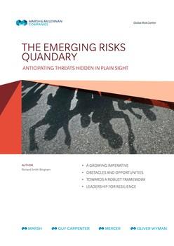 The Emerging Risks Quandary
