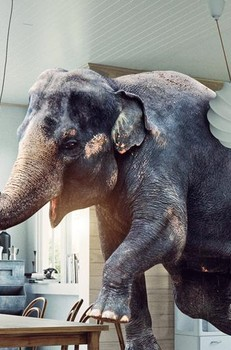Covid-related business interruption claims – addressing the 'elephant in the room'