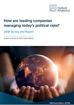 How are leading companies managing today's political risks?
