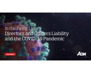 In the Firing Line: Directors and Officers Liability and the COVID-19 Pandemic