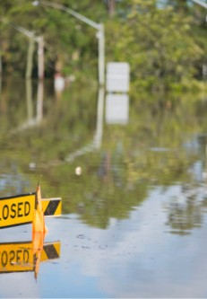 Insurance industry finances stable despite COVID-19, disasters - Insurance Business