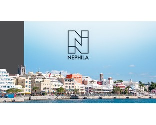 Nephila syndicate's primary profit dives as reinsurance rebounds in 2020