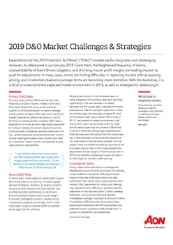 2019 D&O Market Challenges & Strategies