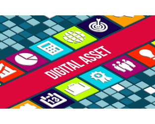 Insurance market adapting to provide digital asset covers - Business Insurance