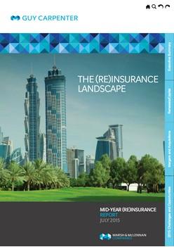 The (Re)Insurance Landscape