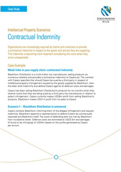 Intellectual Property - Contractual Indemnity