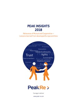 Peak Insights 2018