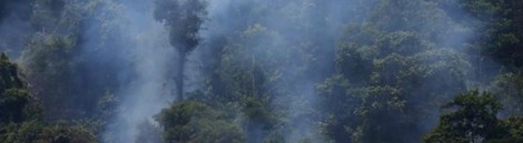 Last decade most expensive for natural disasters: report - Reuters