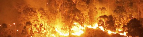 Analysis: the impact of Australia's bushfires on reinsurance