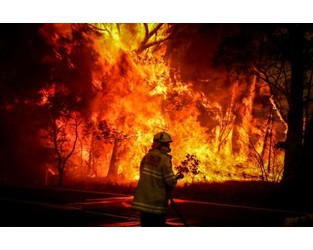 Australia Faces Worsening Bushfires Without Climate Change Action: Report