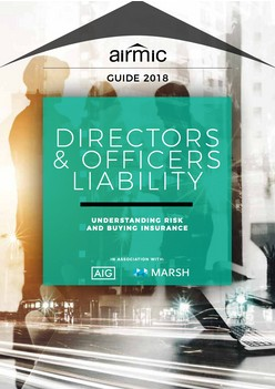 Directors and Officers Liability – Understanding Risk and Buying Insurance