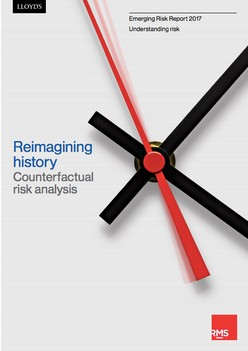 Reimagining history: Counterfactual risk analysis