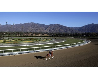 Official: Santa Anita cancels racing after 21 horse deaths