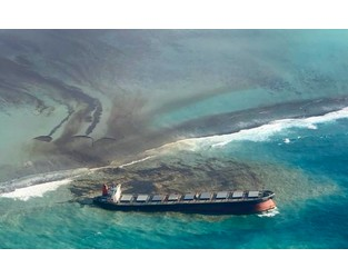Japan Offers Mauritius 'Unprecedented' Support in Oil Ship Accident
