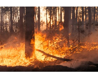 Wyoming Expecting Average Wildfire Conditions