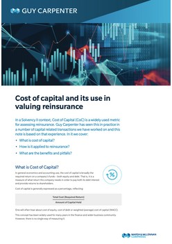 Cost Of Capital And Its Use In Valuing Reinsurance